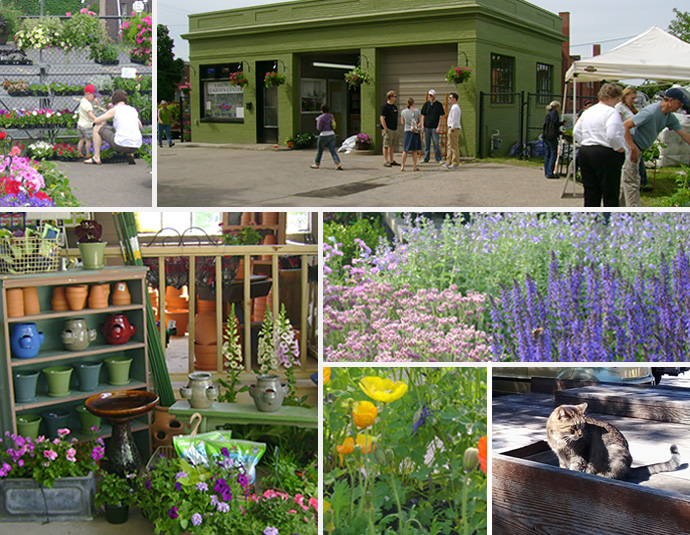 Lakewood-Garden-Center-collage3